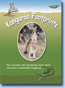 Kangaroo  Footprints